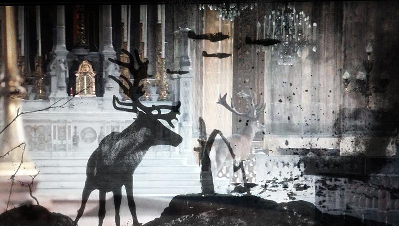 La renna Jasha e il cervo di Leonora Hamill dioramizzati nello stesso luogo, nello stesso tempo (2016)